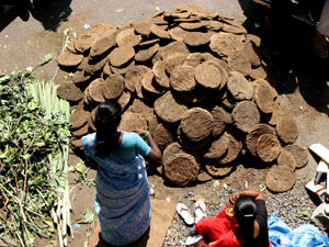 cow dung is used as fuel